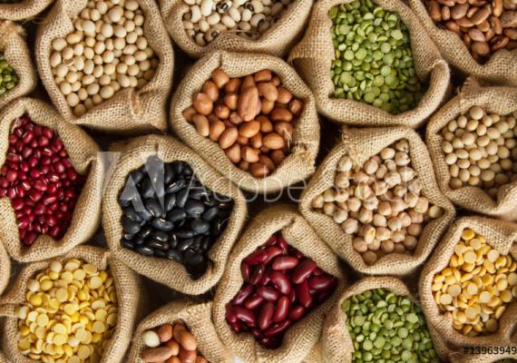 verschiedenes buntes Saatgut